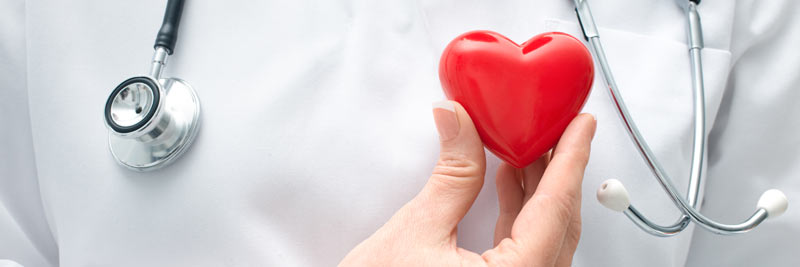 doctor holding a plastic red heart