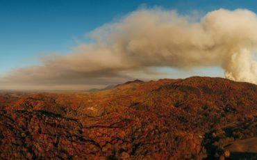 Reversing The Health Impact of Wildfire Smoke Inhalation