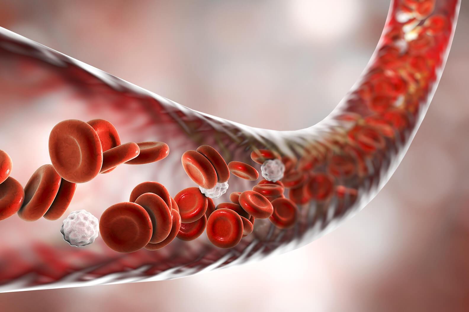 coronavirus and the cardiovascular system